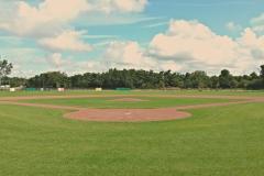 Honkbalveld